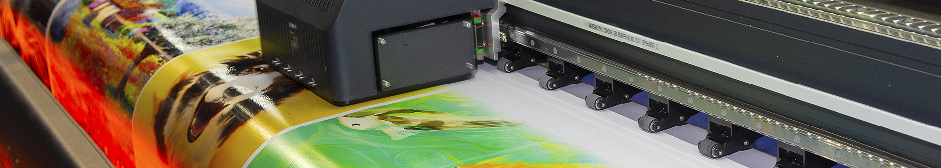 Digital & Litho Printing